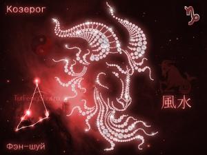 Фэн-шуй для знака Зодиака Козерог