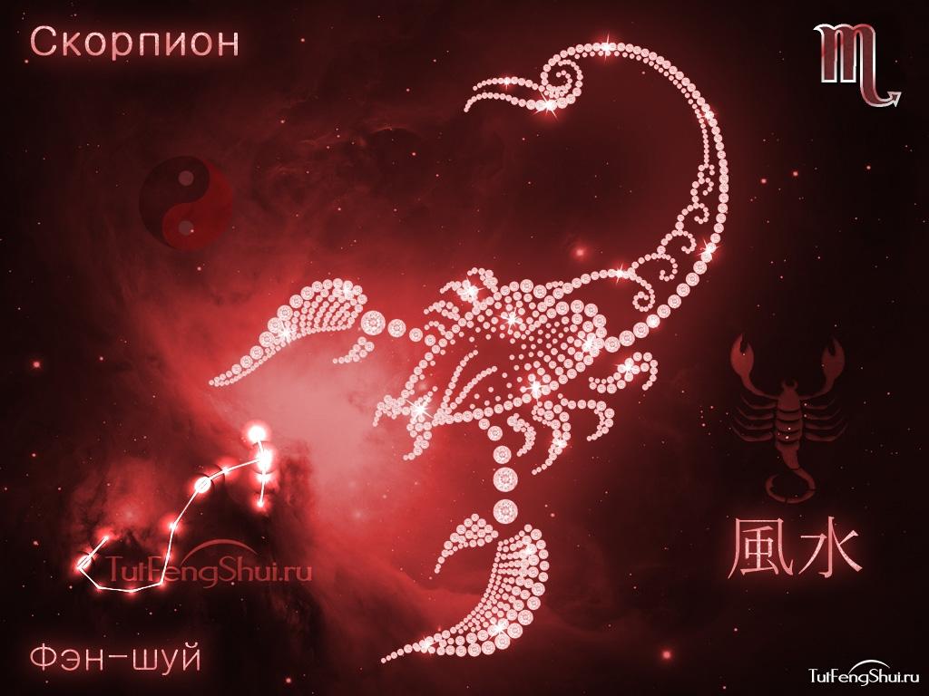 звезды о знаком зодиака скорпион