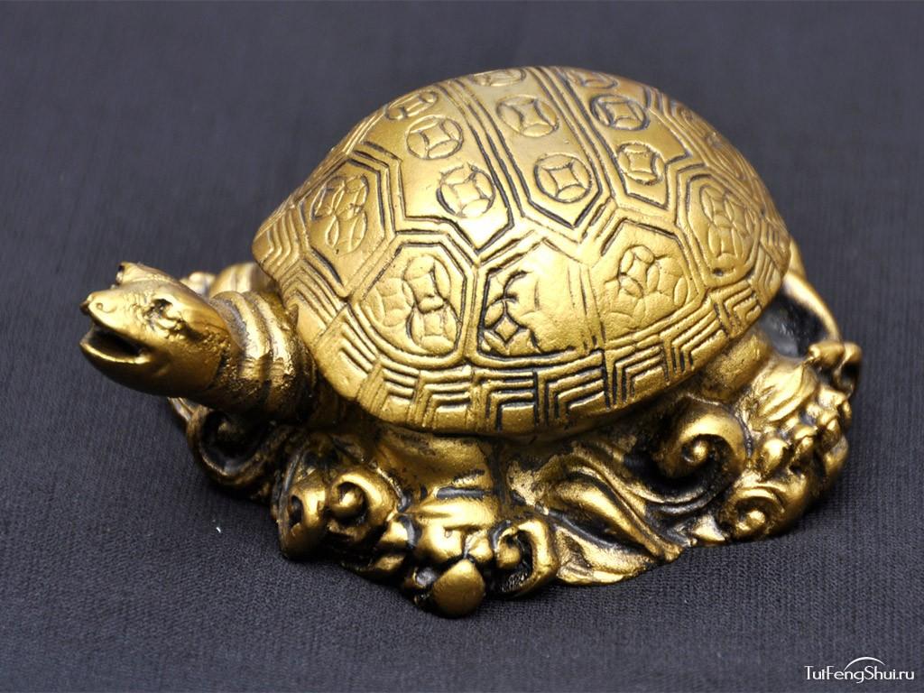 Черная черепаха фен шуй фото