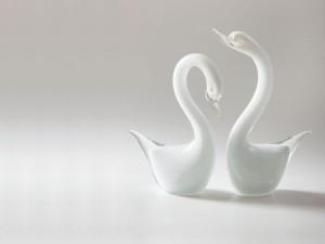Пара лебедей – талисман верности